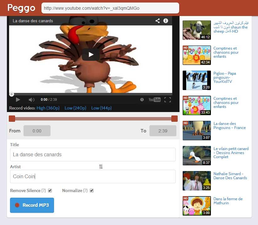 peggo-interface