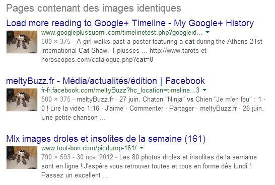 recherche-image-google-images-identiques