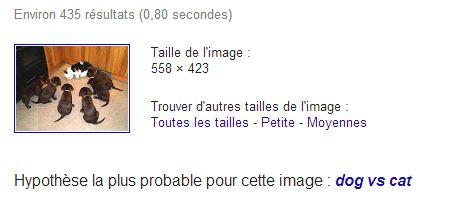 recherche-image-google-resultat