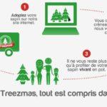treezmas-concept