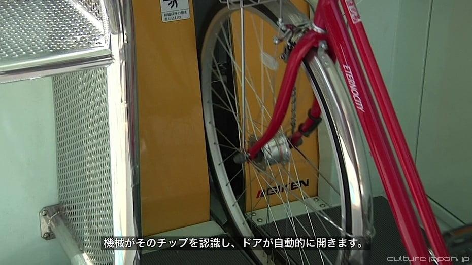 eco-cycle-1