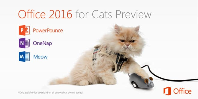 office-2016-for-cats-home