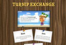 turnip exchange animal crossing