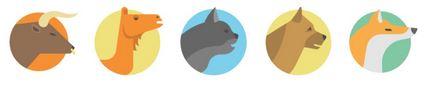 fileroom animal