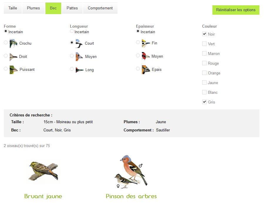 oisillon recherche oiseau